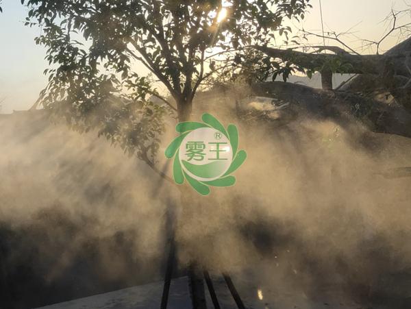 杭州嘉友为长乔极地海洋公园安装园林人造雾系统案例