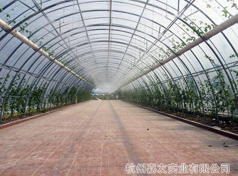 嘉友雾王为米果果小镇撑起清凉伞---农业生态乐园喷雾